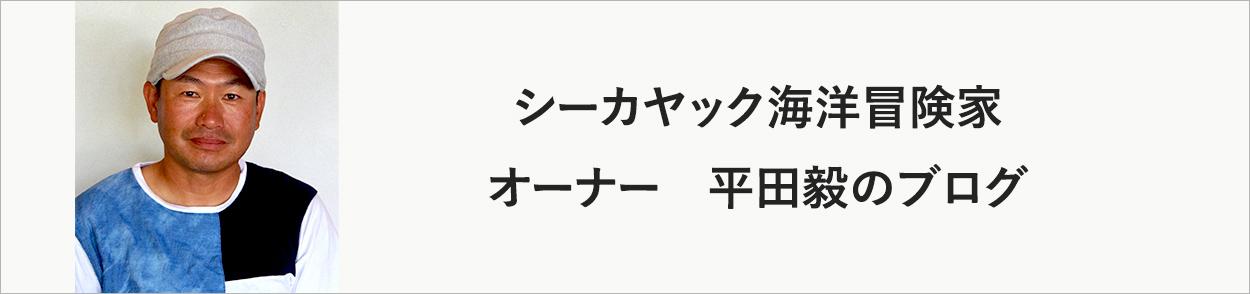 アイランドストリーム代表 平田 毅のブログ