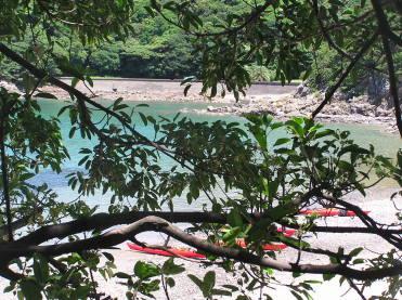 トロピカルムードすら漂う初夏の隠れスポット。